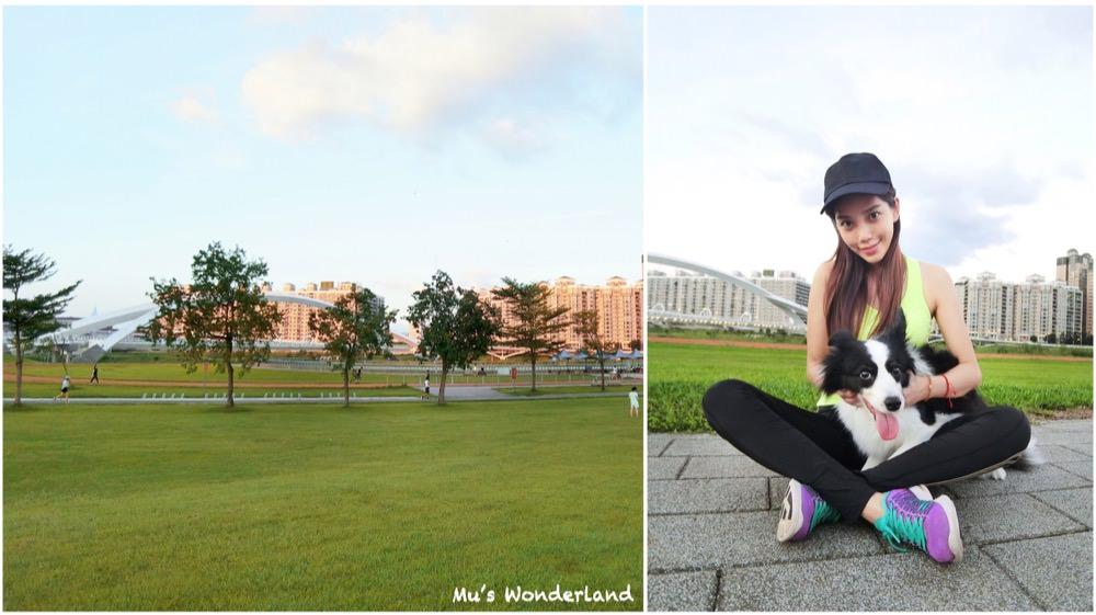 【毛小孩】|新店|陽光運動公園 在城市中也能讓毛小孩放手奔跑的好去處~